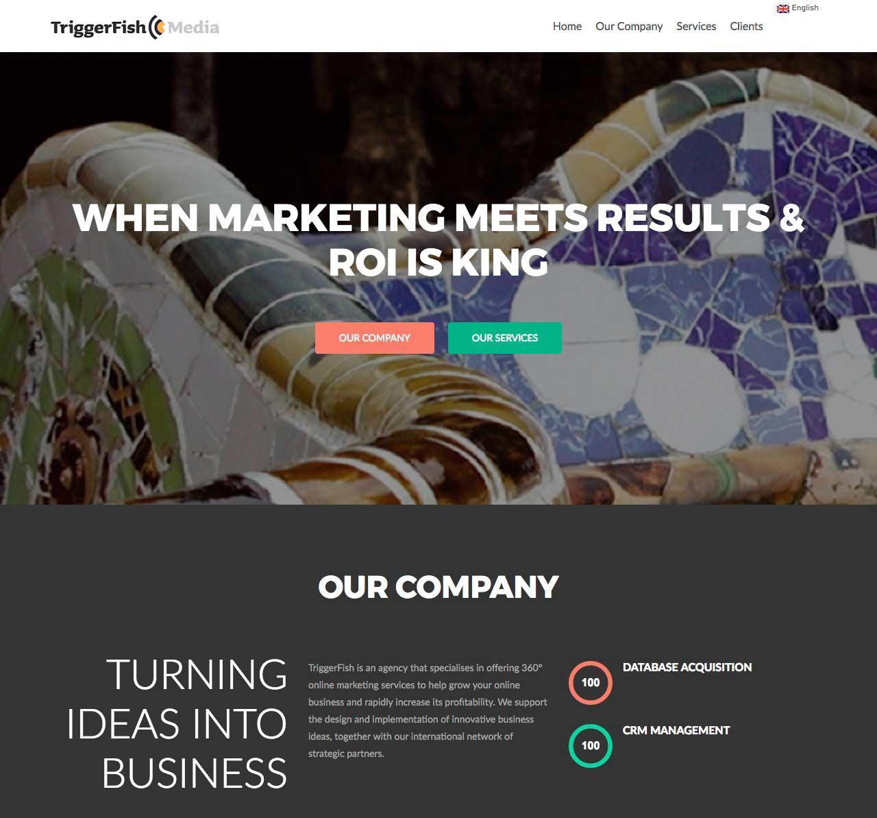 Triggerfish-Media-project