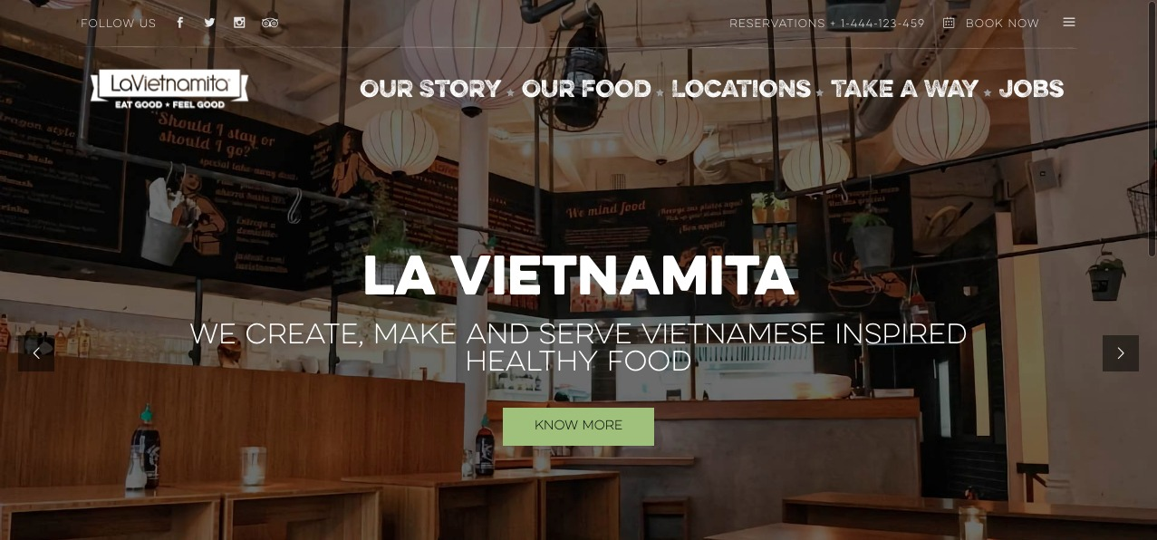 lavietnamita project